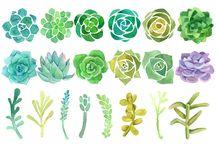 liście i rośliny akwarelowe