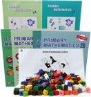 primary maths