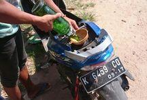 Karimun Jawa, Indonesia / Pictures from Karimun Jawa