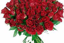 Adoro Flores! / Adoro flores de todas as cores e de todos os tipos.  / by Verônica Lacerda Esteticista