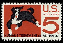 Pets and the Post: Dogs / by National Postal Museum