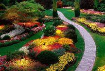 My Goodness Gardens
