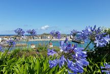 Cornwall Photography 2015 / A collection of some of the very best images captured by guests staying in St Ives with Carbis Bay Holidays, Cornwall during 2015. Includes landscape shots and images of Carbis Bay, St Ives and the West Cornwall area. www.carbisbayholidays.co.uk