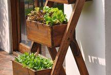 Herb garden ladder