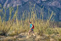 10 ULTIMATE NM HIKES / Hiking is New Mexico's favorite pastime. And no wonder: The call of the trail is easy to answer in a state that ranks sixth in the country for public lands, and where uncrowded tracks lie within minutes of even the largest cities. The terrain varies, climbing from high desert to alpine, sometimes in one hike. Consult the information resources provided for detailed directions and updates on trail, weather, and other variable conditions.