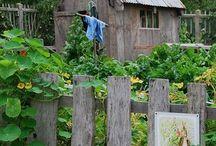 Fences / Flowerbeds