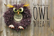 all things owls