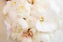 Bryllup / Blomsterbukett