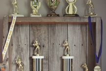 Trophy Display Ideas