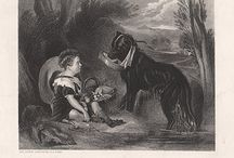 Dogs / Antique prints of dogs