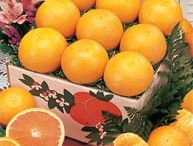 Tangerines / Tangerines from Orange Ring are picked and packed daily Fresh from our Florida Groves. Our Tangerines are very sweet and easy to peel. Try our Honey Tangerines or our Sol Zest Zipper-Skin Sweet Seedless mandarin. Tangerines are a perfect fruit arrangement to send to your recipients.