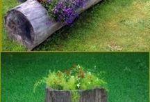 jardim tronco
