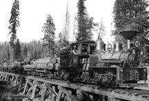 Logging - Steam Era