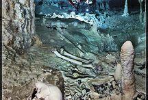 Cave Dive