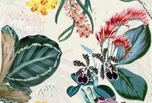 pattern: tropical