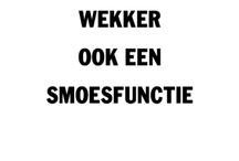Loesje en andere nederlandse uitspraken