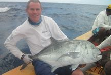 Christmas Island Trip Nov 17th to Dec 4th 2014 - Tom Festing / Clear skies, good guides and 12 hrs of fishing a day, will give you the best chance to land a 60lb plus GT off the flats. Well, it nearly happened twice for me. With one monster lost at the boat, 80lb+ (needed the boat to play the fish from) and one that broke my fly line estimated at 60-70lbs. It was frustrating to say the least, anyway next year…