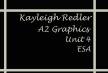 A2 Graphics Exam Unit 4 2016 ESA Workbook