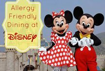 Allergy Free at Disney / by Allergy Free Vintage Cookery