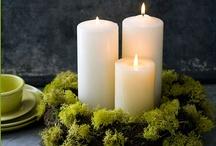 Флористика: Свечи