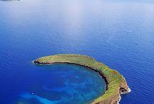Maui / by Danielle Nowicki