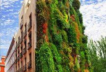 Vertical Wall