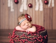 photography - newborn Christmas