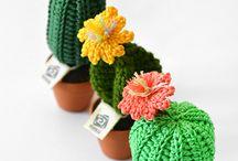 plantas  acrocher