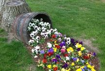 Decoratiuni flori parc