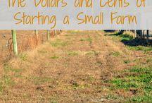 Prepper Homesteading / Prepper homesteading resources