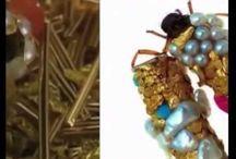 entomology / entomology fly fishing