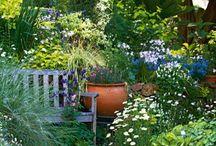 Norden garden