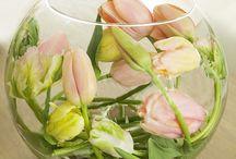 Bloemen in glas