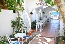 Our Property / by Tres Palmas Inn