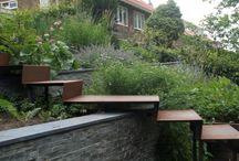 garden / by Shanti Levy