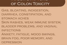All about your colon