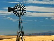 Windmills / by Ann Thompson