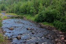 Rivers/ Lakes/ Streams / by Beckie Roberts