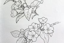 botani for papercutting