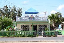 Playa Giron / Hier vind u al onze casa particulares in Playa Giron.