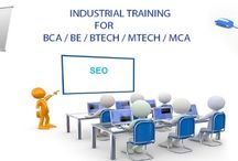Training in SEO/SMO/PPC / We offer training Search Engine Optimization, SMO, PPC