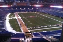Baltimore Ravens / by NFL Boards