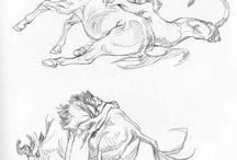 BD illustrations
