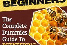 Homestead Honey Bees