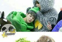 BTS | 방탄소년단 / BTS (Beyond The Scene)  a.k.a  방탄소년단   is popular boyband from South Korea   Members : •Rap Monster •Jin •Suga •J-Hope •Jimin •V •Jungkook