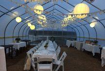 Greenhouse Dinner Series