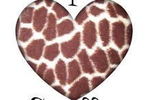 Giraffe-A zsiráf a legszebb