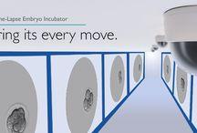 Embryo Incubators / The new Esco Miri® is a revolution in form and functionality for CO2 incubators for in vitro fertilization.