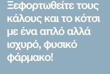 ΚΟΤΣΙ-ΚΑΛΟΙ