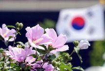 Mugunghwa is the national flower of South Korea